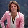 Мужская мода 1970-х. Британский певец Энди Гибб, 1970-е
